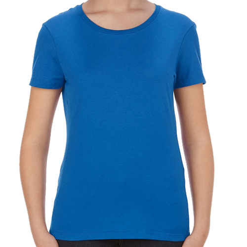 Ladies Fitted T-Shirt: